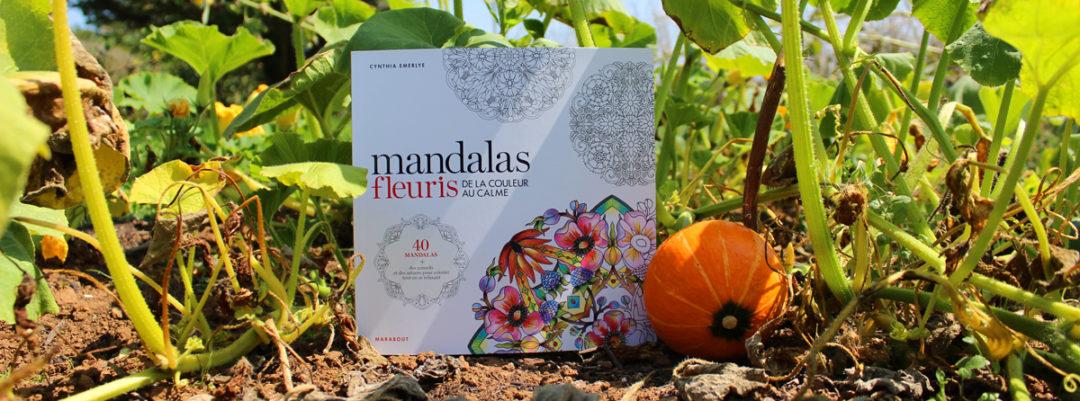 mandalas-fleuris-de-la-couleur-au-calme