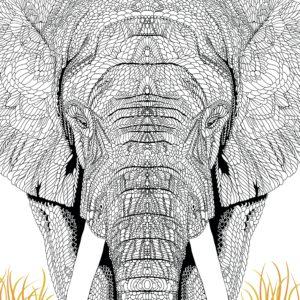 La ménagerie portrait d'animaux à colorier page 2